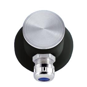 Passive Road Surface Temperature Sensor